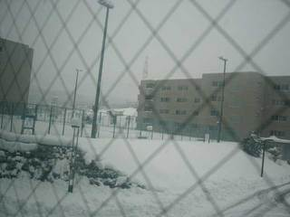 snow1214b