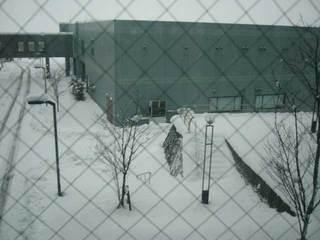 snow1214c