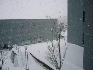 snow1216b